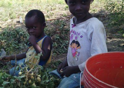 bambini con arachidi